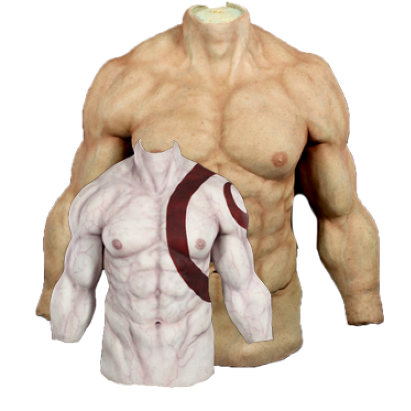Muscle Body Suit