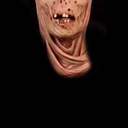 Entity Cloth Face Mask