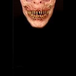 Mayhem Cloth Face Mask