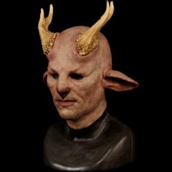 Pan Silicone Half Mask